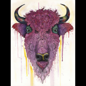 Pastel and drawing of a buffalo