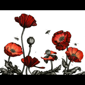 Drawing of red flowers and bees
