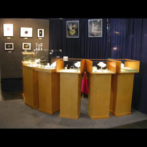 Art display with jewelry